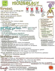 My Notes for USMLE oh-soufflegirl: Hey everyone! Here (x) is my Microbiology note! Sorry for the delay; I've been pretty busy these past few days. Have a lovely week! Nursing Notes, Nursing Tips, Nursing Programs, Bsn Nursing, Funny Nursing, Teaching Science, Life Science, Science Notes, Science Notebooks