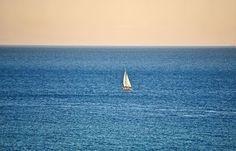 Σκέψεις: ένα καράβι με χιλιάδες ψυχές, γράφει ο Τάσος Ορφαν... Cn Tower, Travel, Viajes, Traveling, Tourism, Outdoor Travel