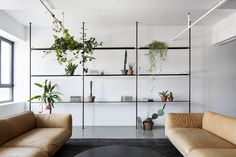 © Adrien Williams     SAINT-LAURENT APARTMENT  by Atelier Barda architecture