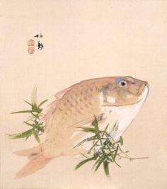 Takeuchi Seiho竹内栖鳳《艸影帖・色紙十二ヶ月》のうち 「鯛(一月)」