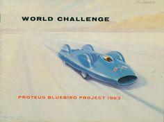 Proteus Bluebird Project