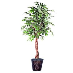 Vickerman Artificial Variegated Focus Heartland Tree, 6' -- You can find out more details at the link of the image.