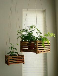 Ideas para decorar con plantas: cuelga plantas para darle estilo a tu casa.