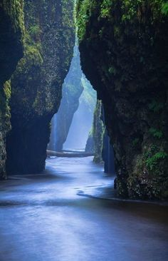 19 Most Beautiful Places to Visit in Oregon - Page 10 of 19 Oneonta Narrows - Columbia River Gorge, Oregon. Located at the Columbia River at River Mile the falls are just half a mile up Oneonta Creek. The best way for visitors to reach Oneonta Narrows Oregon Travel, Travel Usa, Oregon Hiking, Oregon Coast Roadtrip, Beach Travel, Portland Oregon Hikes, Oregon Tourism, Oregon Camping, Oregon Vacation