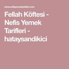 Fellah Köftesi - Nefis Yemek Tarifleri - hataysandikici