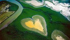 Coeur de Voh, Grande Terre - Nouvelle Calédonie