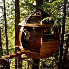 A treehouse that treehouse dreams are made of.