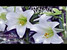 HAPPY EASTER 2018 !(EASTER LILIES!)~Angel Chorus By Magnus Ringblom Lily Images, Easter 2018, He Is Risen, Images Google, Lilies, Happy Easter, Angel, Bird, Google Search