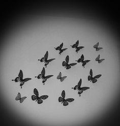 Butterflys on my wall..