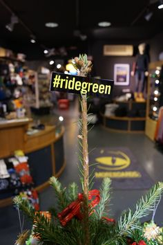#ridegreen Klagenfurt, Table Decorations, Green, Plants, Home Decor, Homemade Home Decor, Flora, Plant, Decoration Home