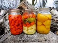 canning food without electricity