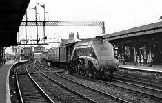60017 Silver Fox at Selby Diesel Locomotive, Steam Locomotive, Steam Trains Uk, Flying Scotsman, Disused Stations, Steam Railway, British Rail, Old Trains, Train Tickets