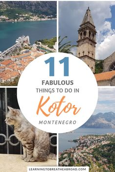 A comprehensive city guide for Kotor in Montenegro. Things to do in Kotor, where to stay in Kotor, how to get to Kotor and day trips from Kotor. Europe Destinations, Europe Travel Guide, Travel Guides, Backpacking Europe, European Vacation, European Travel, Ukraine, Montenegro Travel, France