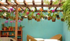 Tudo e mais um pouco sobre jardim suspenso - Morando sem Grana