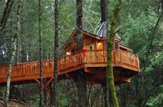Image result for Awesome Treehouse Beds