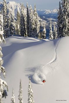 Skiing at Fernie, Canada. My home town and favourite ski destination! Love you and miss you Fernie Winter Fun, Winter Snow, Luxury Ski Holidays, Stations De Ski, Canada Holiday, Vail Colorado, Skiing Colorado, Ski Season, Snow Skiing