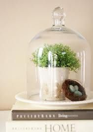 Cloche Decor. I keep seeing cloches everywhere! Will use one when I redecorate