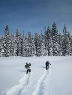 Snow Shoeing in Colorado {Your Adventure Photos -- National Geographic}