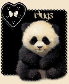 Panda Boy Hug
