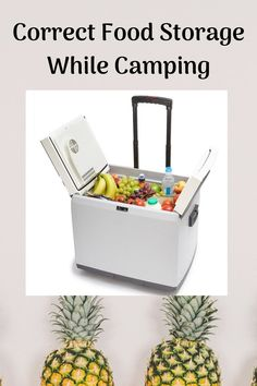 Learn the best and correct ways to store your food while on camping trips. No more soggy stuff from cool boxes or things going off with the heat.