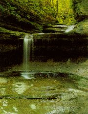 Starved Rock State Park is one of Illinois' most beautiful natural landmarks. Located in Utica, IL.