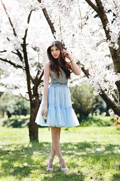 In a Cherry Blossom Fairytale