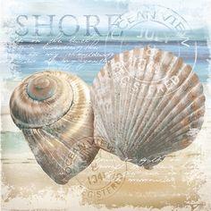 The Shore / Conrad Knutsen