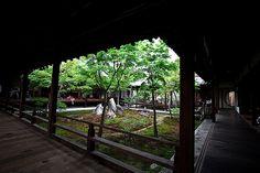 Courtyard in Kyoto Kennin-ji Temple.