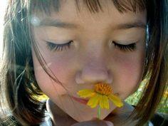 El olfato humano « Notas Curiosas