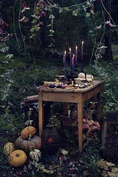 Enchanted Evening in the Autumn/Fall Woods.