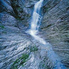 La #Natura dell'#Alpago  http://www.alpagocansiglio.eu/it/sport-e-natura/natura-in-alpago