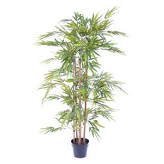 Bambou artificiel eco - 6 cannes - 3 tailles