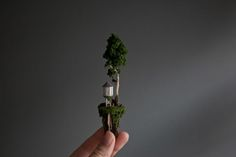 miniature landscape sculptures contained in small test tubesby Rosa de Jong