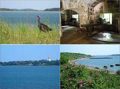 Tour of Boston Harbor Islands Boston Beans, Harbor Island, Boston Harbor, Islands, Island