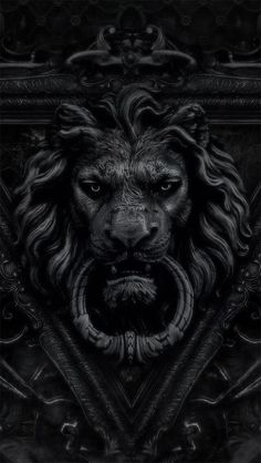 Knock the lion if you dare