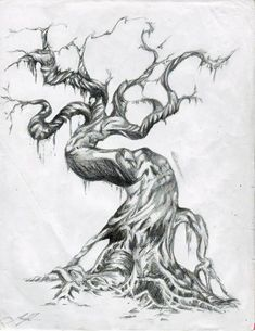 Super Ideas For Twisted Tree Drawing Big Tree Drawing, Drawing Drawing, Olive Tree Tattoos, Willow Tree Tattoos, Twisted Tree, Tree Tattoo Designs, Tattoo Tree, Tree Sketches, Tree Graphic