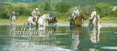 Ballynamire Equestrian Stable - GDR