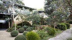 Hey, Boyd, it's Beaumaris calling Landscaping Near Me, Modern Landscaping, Outdoor Landscaping, Outdoor Gardens, Landscape Plans, Garden Landscape Design, Amazing Gardens, Beautiful Gardens, Australian Native Garden