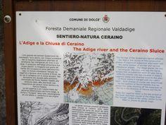 Da Ceraino a Volargne lungo il percorso dell'antica #Alzaia