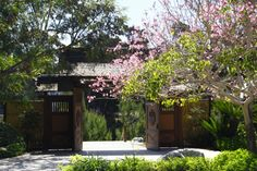 The Japanese Garden in Balboa Park is currently undergoing an expansion and will ultimately be 11 acres.  It will include a teahouse, an amphitheater, several ponds with koi fish, and meandering paths adorned with cherry blossoms.