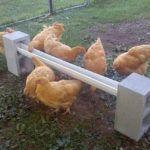 DIY Cinder Block Chicken Feeder