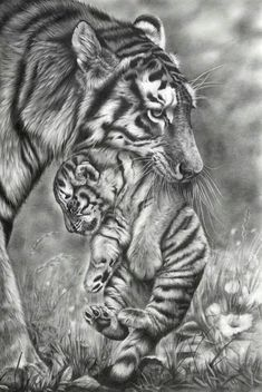 Awesome pencil sketch: