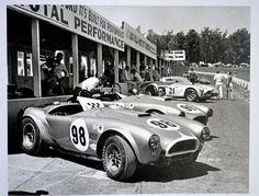 Just a car guy : Cobra
