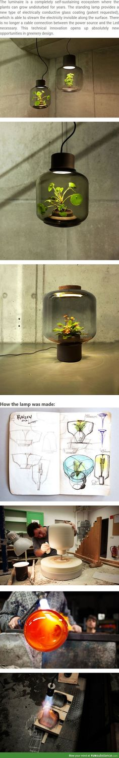 These Eco Lamps Were Deigned To Grow Plants In Places Without Sunlight U2013  FunSubstance