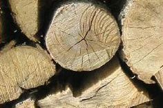How to Season Firewood (How to Dry Firewood)