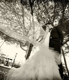Glamorous Florida Wedding from Domino Arts Photography. To see more: http://www.modwedding.com/2014/06/23/glamorous-florida-wedding-domino-arts-photography/ #wedding #weddings #hairstyle #wedding_dress