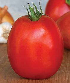 Tomato, SuperSauce Hybrid