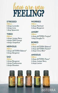 Essential Oils for Radical Self-Love