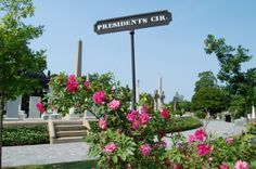 The heritage roses at Hollywood have both a historic and horticultural importance to the cemetery.