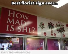 ha ha ha...yes...all flower shops and boutiques...even jewelry stores should have a guide like this.